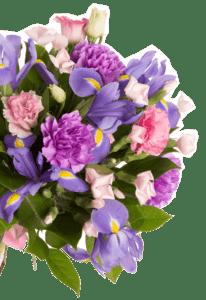 theflowershop-floresadomicilio-floresporsuscripcion-florespormembresia